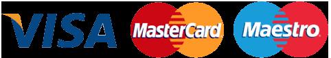 visa mastercard maestro icon